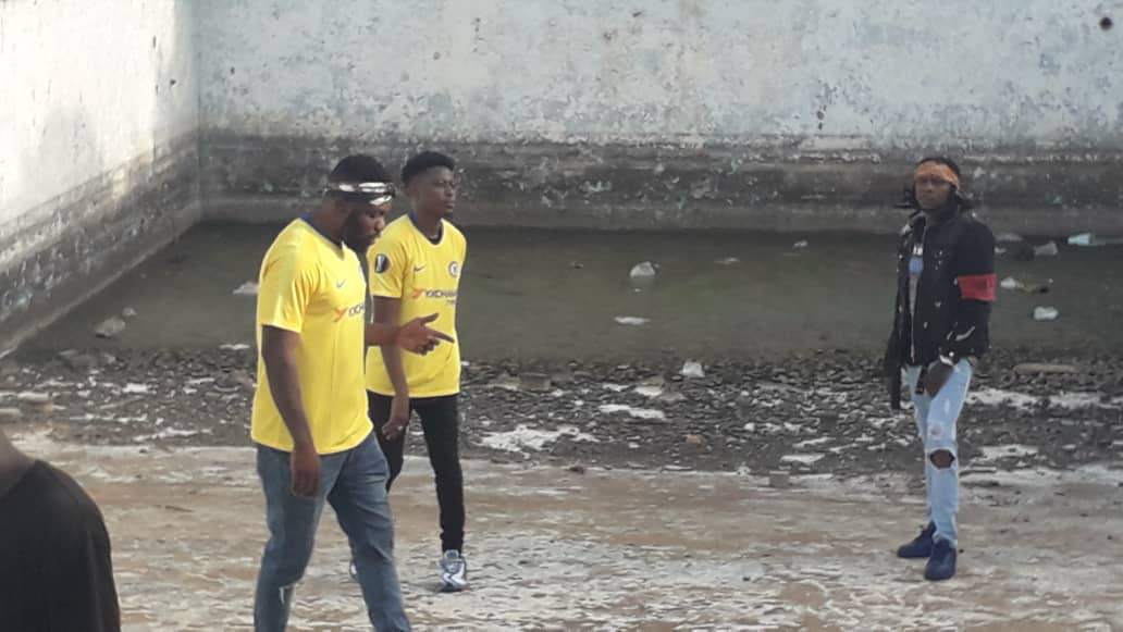 R2bees, SITE 15, Videos